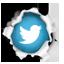 Netz2Null auf Twitter